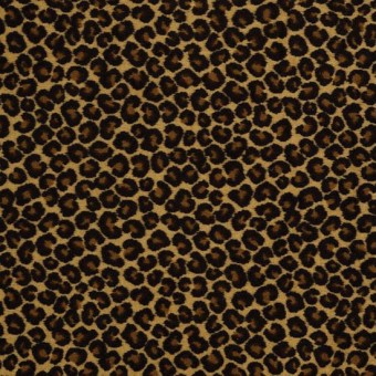 Cheetah - Keep the Pace From Shaw Carpet