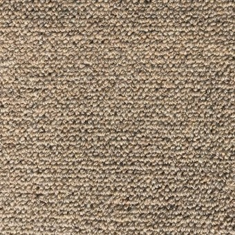 42oz Wool Carpet - fawn From Showcase Collection