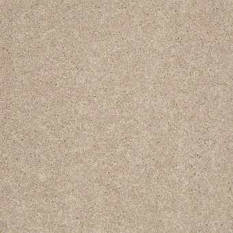 Style Blend - Alabaster From Shaw Carpet