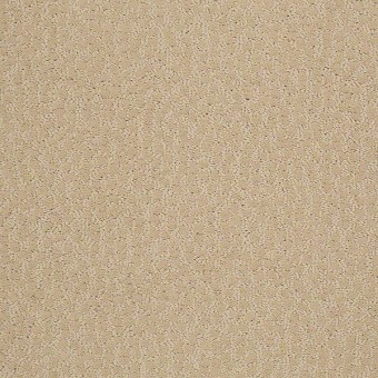 Cheshire - Abalone From Shaw Carpet