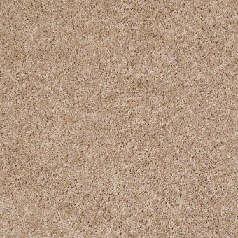 One Over All - Aura From Shaw Carpet