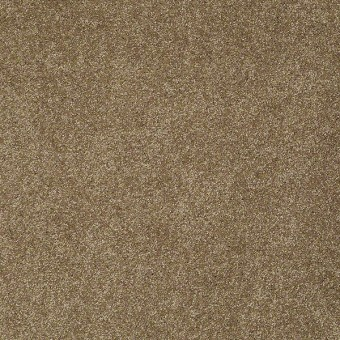 From The Heart I - Brown Rice From Shaw Carpet