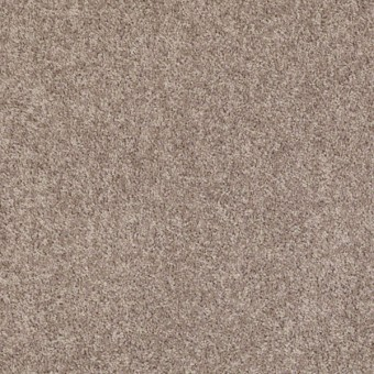All Star Weekend I - Aloe From Shaw Carpet