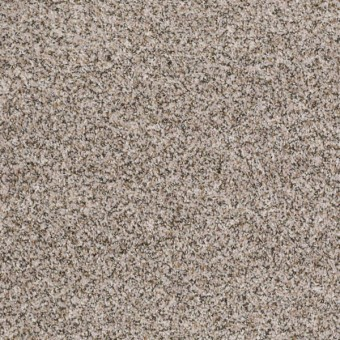 Find Your Floor (T) - Alabaster From Shaw Carpet