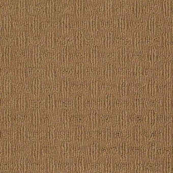 Know It All - Acorn From Shaw Carpet