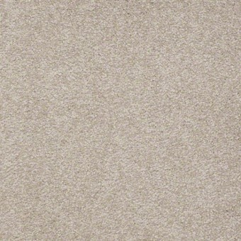 Biltmore III - Balanced Beige From Showcase Collection