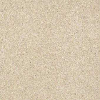 Biltmore I - Custard From Showcase Collection