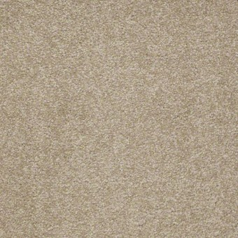 Biltmore I 15' - Cardboard From Showcase Collection