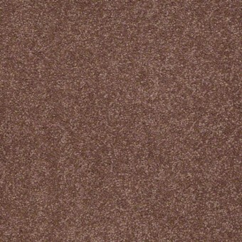 Biltmore III - Mocha From Showcase Collection