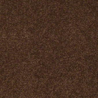 Biltmore III - Cocoa From Showcase Collection