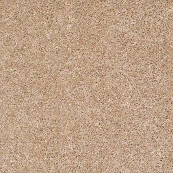 Vitalize (S) - Abstract From Shaw Carpet