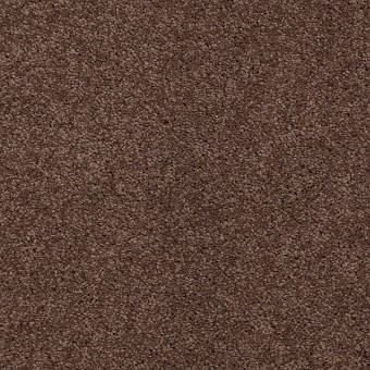 Fusion Value 500 - Adobe From Shaw Carpet