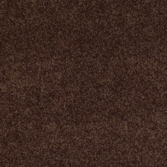 Enduring Comfort Iii Shaw Carpet Amp Queen Save 30 50