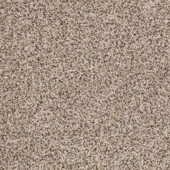Power Buy 50 (B) - Biscotti From Shaw Carpet