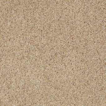 Magnetic Design II - Asian Sand From Shaw Carpet