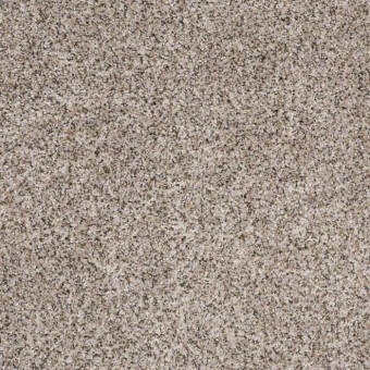 Power Buy 75 - Alabaster From Shaw Carpet