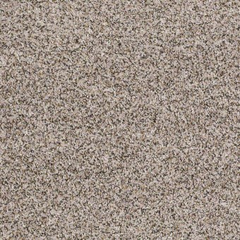 Power Buy 275 - Alabaster From Shaw Carpet