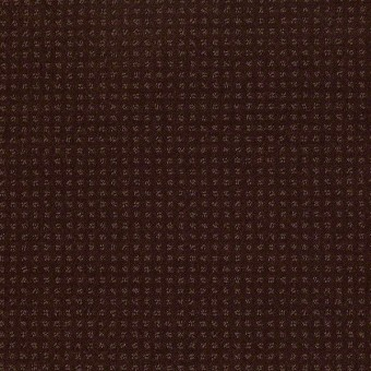 Enduring Comfort Pattern - Apple Butter From Shaw Carpet