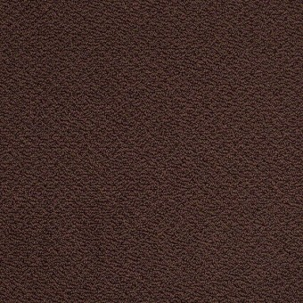 Timeless Charm Loop - Apple Butter From Shaw Carpet
