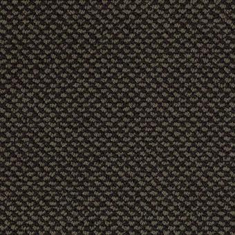 Magnetic Design Loop - Magic Emerald From Shaw Carpet