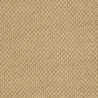 Magnetic Design Loop - Country Wheat From Shaw Carpet
