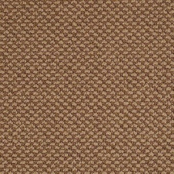 Magnetic Design Loop - English Toffee From Shaw Carpet