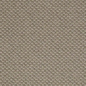 Magnetic Design Loop - Smooth Slate From Shaw Carpet