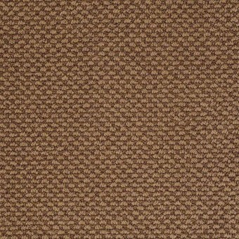 Magnetic Design Loop - Cabin From Shaw Carpet