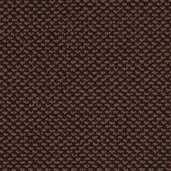 Magnetic Design Loop - Apple Butter From Shaw Carpet