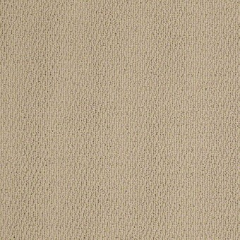National Event - Bermuda Sand From Shaw Carpet