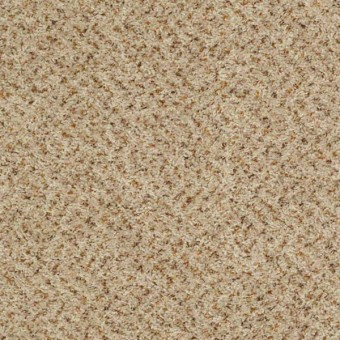 Expect More (B) - Parchment From Shaw Carpet