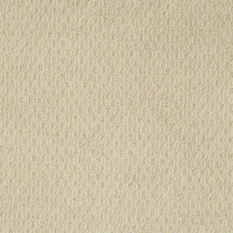 Ready to Go - Linen From Shaw Carpet