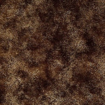 Appaloosa - Aged Leather From Shaw Carpet