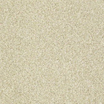 Sun Kissed Texture II - Pristine Texture From Shaw Carpet