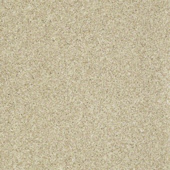 Sun Kissed Texture III - Sand Texture From Shaw Carpet