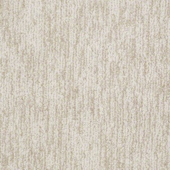 Sun Kissed Image From Shaw Carpet Save 30 50