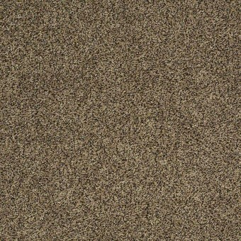 Polished Texture II - Birch Texture From Shaw Carpet