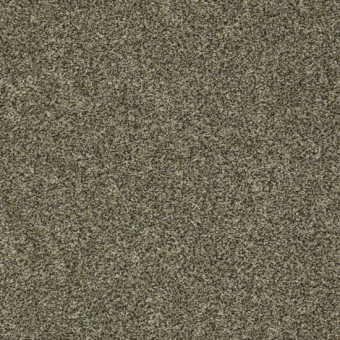 Polished Texture III - Evening Texture From Shaw Carpet
