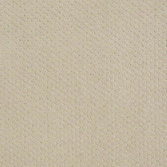 Genesis - Frost From Shaw Carpet