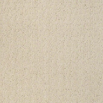 Activate - Winter White From Shaw Carpet