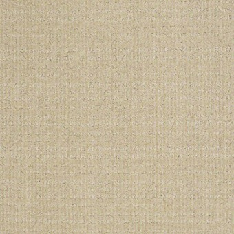 Woven Beauty - Winter White From Showcase Collection