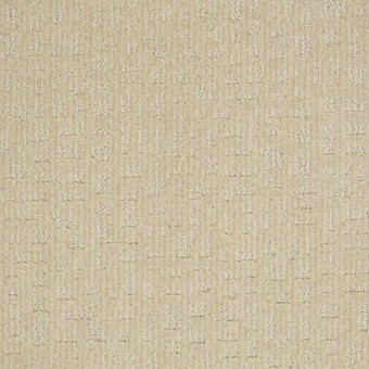 Instant Impact - Winter White From Shaw Carpet