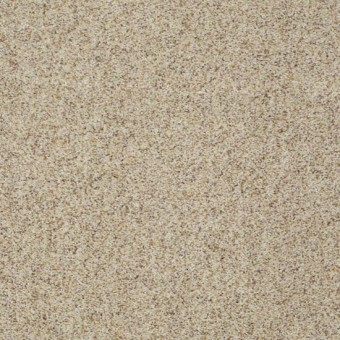 Emerge (B) - Feather From Shaw Carpet
