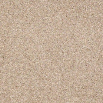 Sandy Hollow Classic II - Adobe From Shaw Carpet