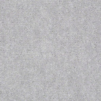 Well Played I - Dove Tail From Shaw Carpet