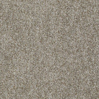 Expect More (T) - Flax Seed From Shaw Carpet