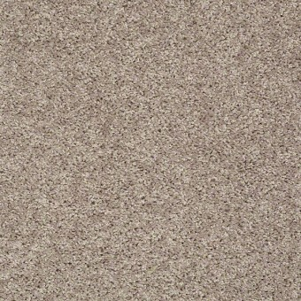 Go Big - Glimmer From Shaw Carpet