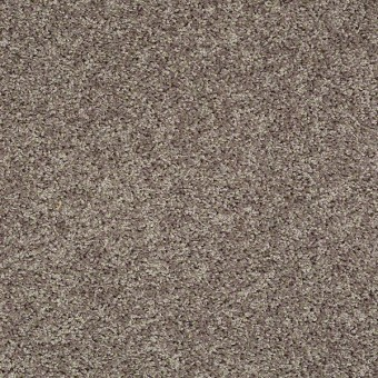 Go Big - Trade Wind From Shaw Carpet