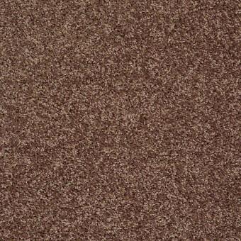 Go Big - Saddle From Shaw Carpet