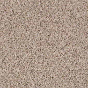 Live Big - Linen From Shaw Carpet
